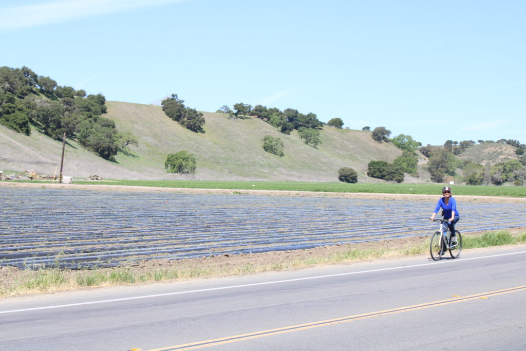 Author rides a bike in the wine country near Solvang